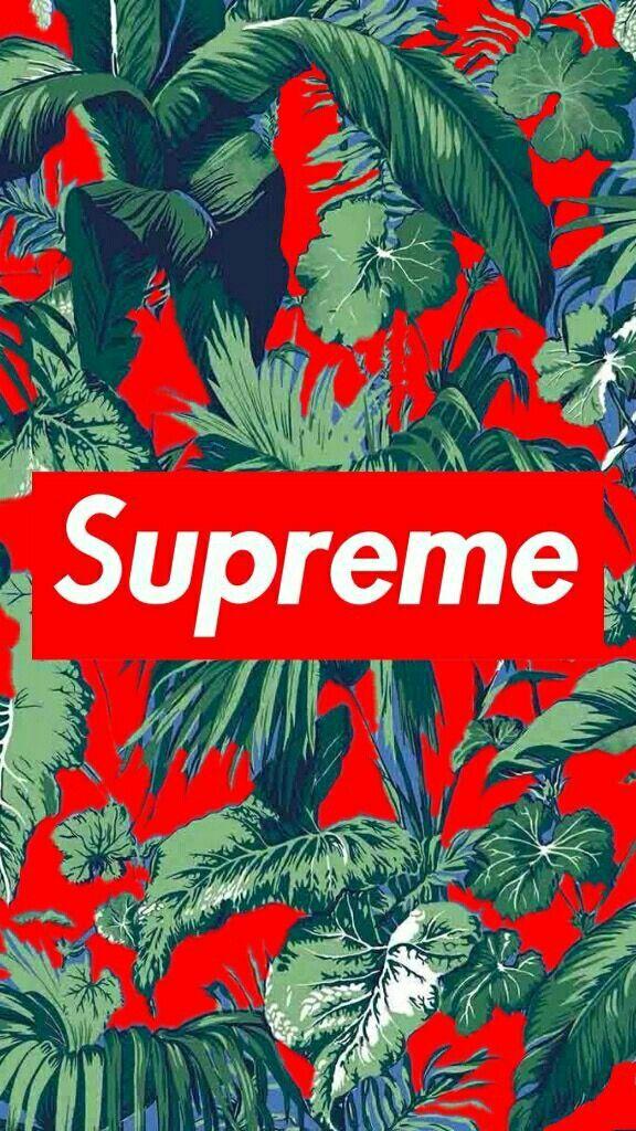 Supreme 11